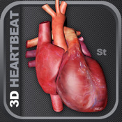 3D Heartbeat Animation St 3d animation