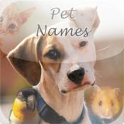 Pet Names: Dog, Cat, Hamster, Lizard and other Pet Names