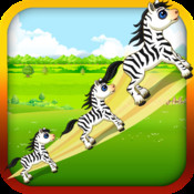 Baby Zebra Zoom - Race the Tiny Zebra in Zoo Forest