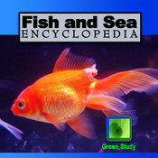 Fish and Sea Encyclopedia marine first aid kits