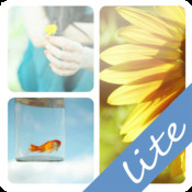 PicFrame+ Lite | Enjoy your funny life!