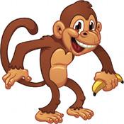 Monkey For Kids HD