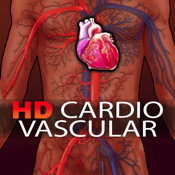 HD Cardio Vascular System