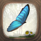 Butterfly puzzle flights