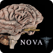 Brain Pro (NOVA Series) - iPad edition