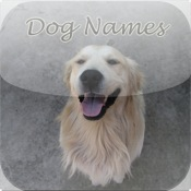 Dog Names, Find a pet name for your new pup