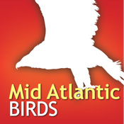 Audubon Birds Mid Atlantic – A Field Guide to the Birds of The Mid Atlantic States karaoke mid