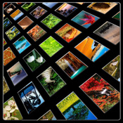 200+ Nature Wallpapers (HD) for iPad