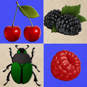 Berries and Bugs. Collect berries and do not touch the bugs!