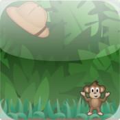 Extra Monkey Memory