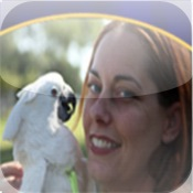 Pet Birds - Your Pet Bird And You!