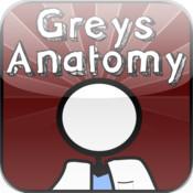 Grey`s Anatomy Stick Figure Trivia