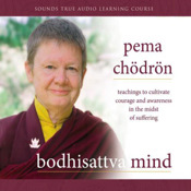 Bodhisattva Mind Teachings to Cultivate Courage and Awareness in the Midst of Suffering by Pema Chödrön