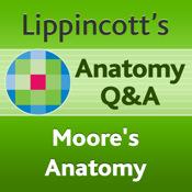 Moore`s Clinical Anatomy Q&A