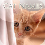 Cat Names: Cute Kitten Names for your Pet Cat