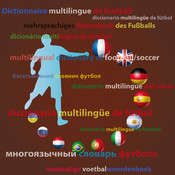 Multilingual dictionary of football words and expressions