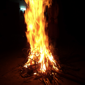 Bhogi Messages & Images / New Messages / Latest Messages / Hindi Messages