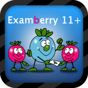 11+ Non-verbal Reasoning FREE