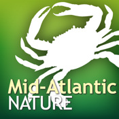 Audubon Nature Mid-Atlantic - The Ultimate Mid-Atlantic Nature Guide karaoke mid