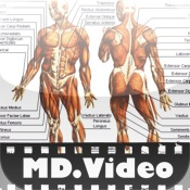 MDVideo: Anatomy & Physiology II md
