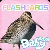 baby365-bilingual flash cards - animals (part 2)
