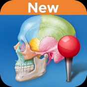 Netter's Anatomy Flash Cards, 3rd Edition net 1 1 2 0
