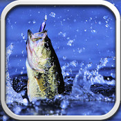 Freshwater Fishing - ID, Lures, Fish Spots Guide