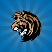 Detroit Lions Football Live