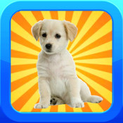 Memory Puppies - A Dog Matching Game!