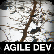 The Art of Agile Development development