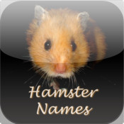 Hamster Names: Pet Baby Names for your Hamster
