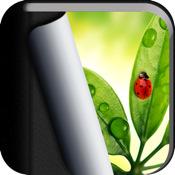 Best Album (+Transfer) for iPad photos
