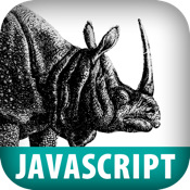 JavaScript Pocket Reference, Second Edition netscape full