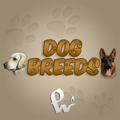 Dog Breeds - Most popular dogs of the world