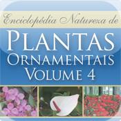 Plantas Ornamentais - Volume 4