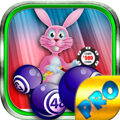 Bingo Easter Holiday PRO - Play Online Casino Game for FREE !