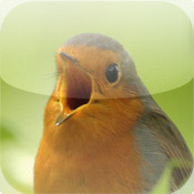 Vogelstimmen-Trainer (Nature Lexicon)