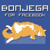 Bonjega For Facebook: A Unique Facebook Interface facebook