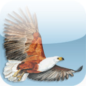 Roberts VII Multimedia Birds of Southern Africa HD