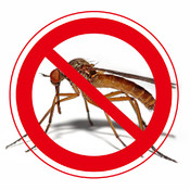 Angry Mosquitoes&Angry Flies-Bugs Away:Mosquitoes Away&Flies Away+Anti Mosquitoes&Anti Flies&Anti dogs+Bugs Spray+Ultrasonic insect repellent-Pro