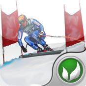 Ski Fly - The skier`s I `ve got a skiing jones racing game