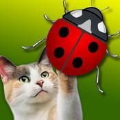 Go-Cat® JitterBug