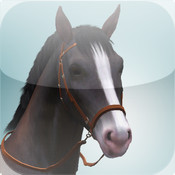 Equestrian Center - Horse Guide for The Sims 3: Pets