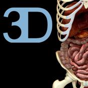 Digestive System - iPad edition