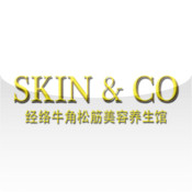 Skin & Co objectbar skin