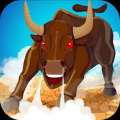Bull City Run