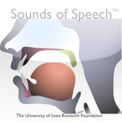 Sounds of Speech