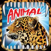 Animal Wallpapers - iPad Edition