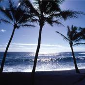 Hawaii`s Big Island: Best Beaches