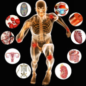 Principles of Anatomy and Physiology HD
